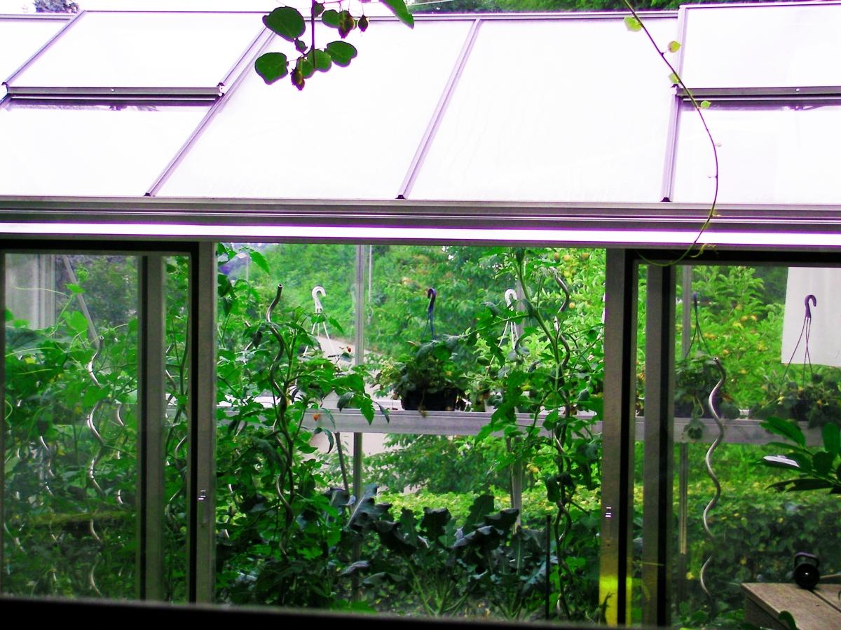 j and j greenhouse naples fl - photo#16